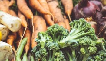 vegetablefruitjuiceextractor.home.blog